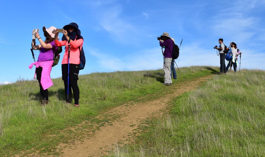 pleasanton-ridge-reginal-park80