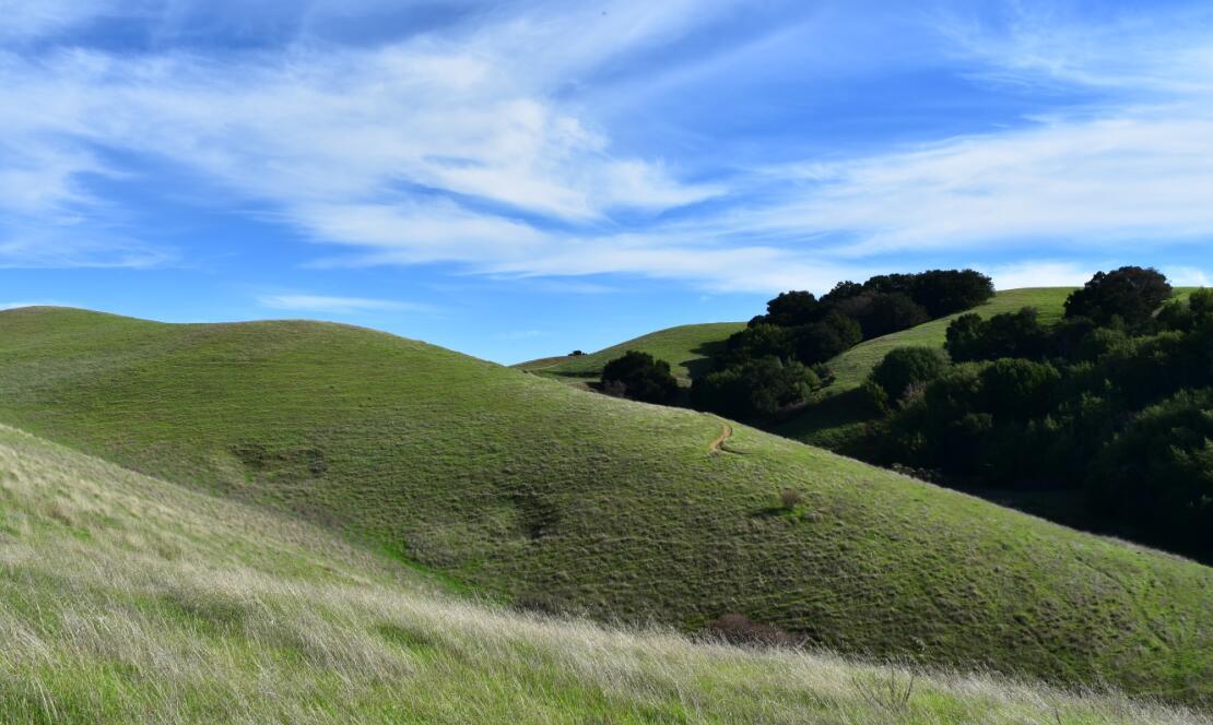pleasanton-ridge-reginal-park81