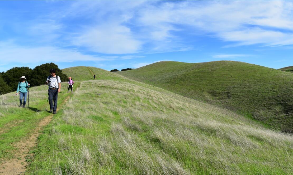pleasanton-ridge-reginal-park82
