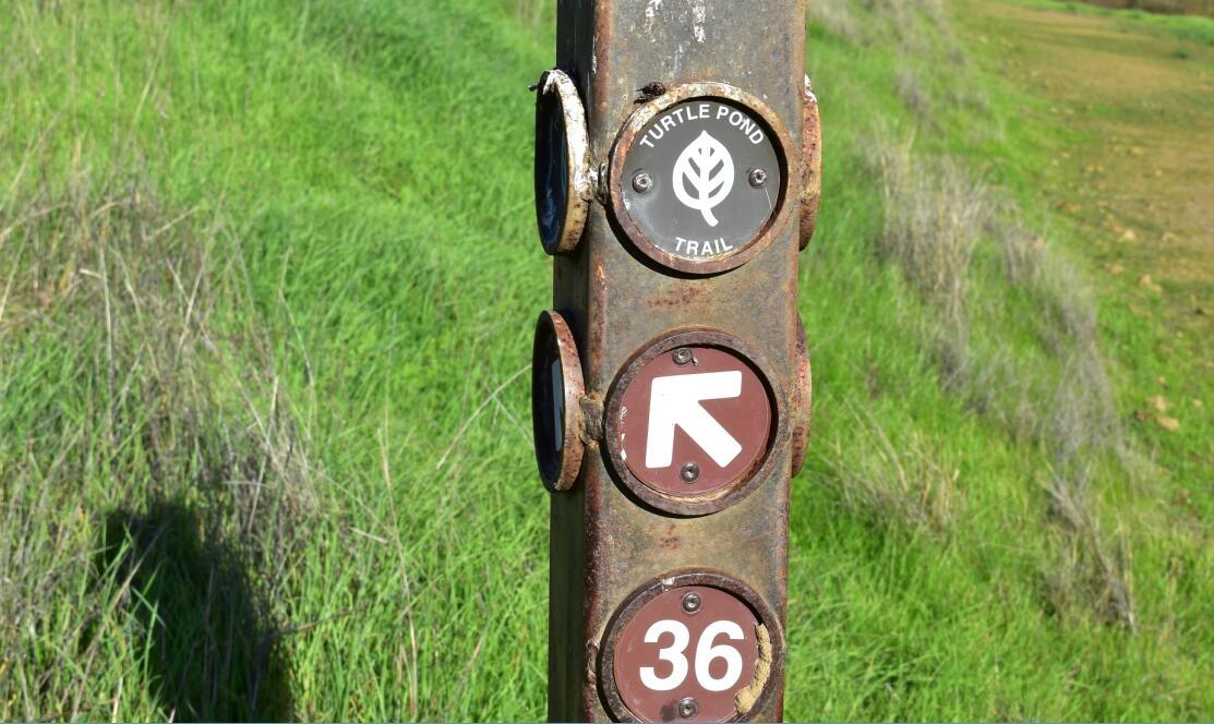 pleasanton-ridge-reginal-park90_3