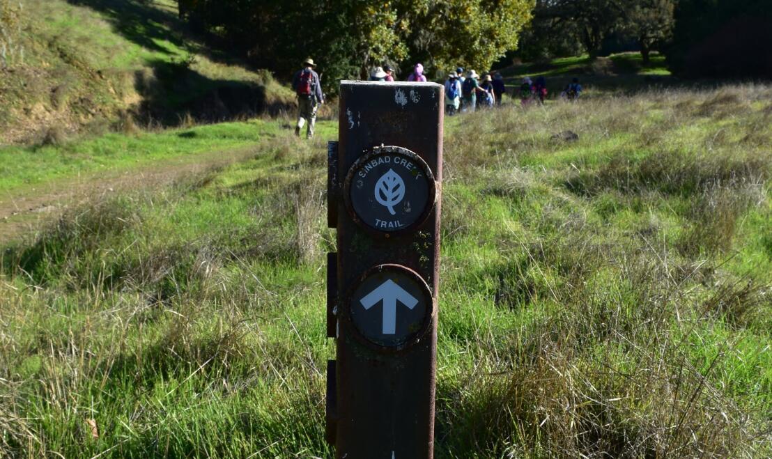 pleasanton-ridge-reginal-park92