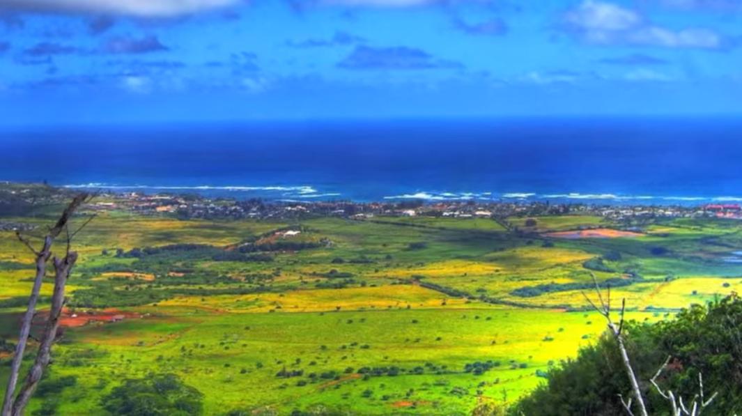sleeping-giant-moutain-trail-nounou-mountain-kauai-hawaii2