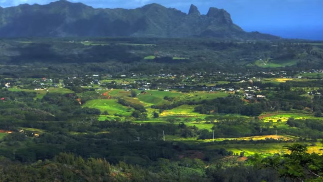 sleeping-giant-moutain-trail-nounou-mountain-kauai-hawaii2_1