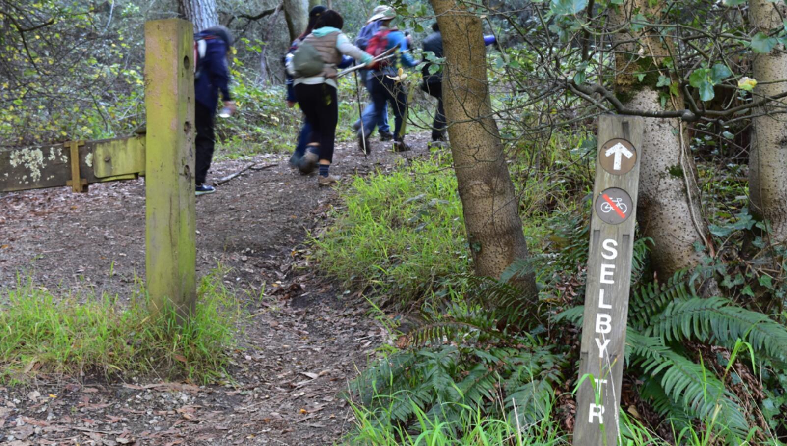 tilden-regional-park6