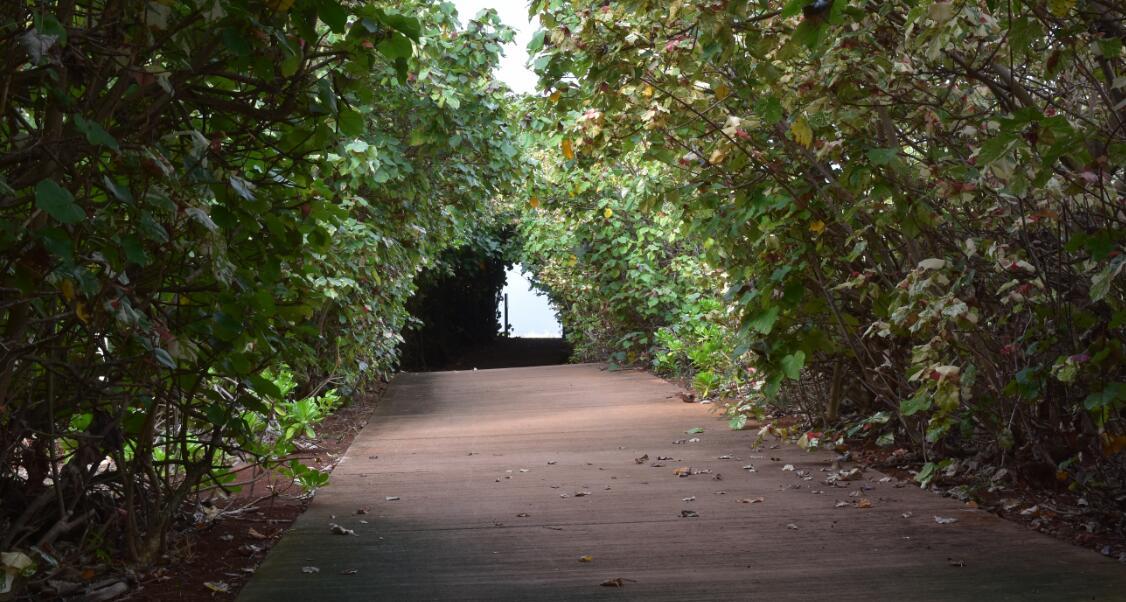 kauai-north2_1
