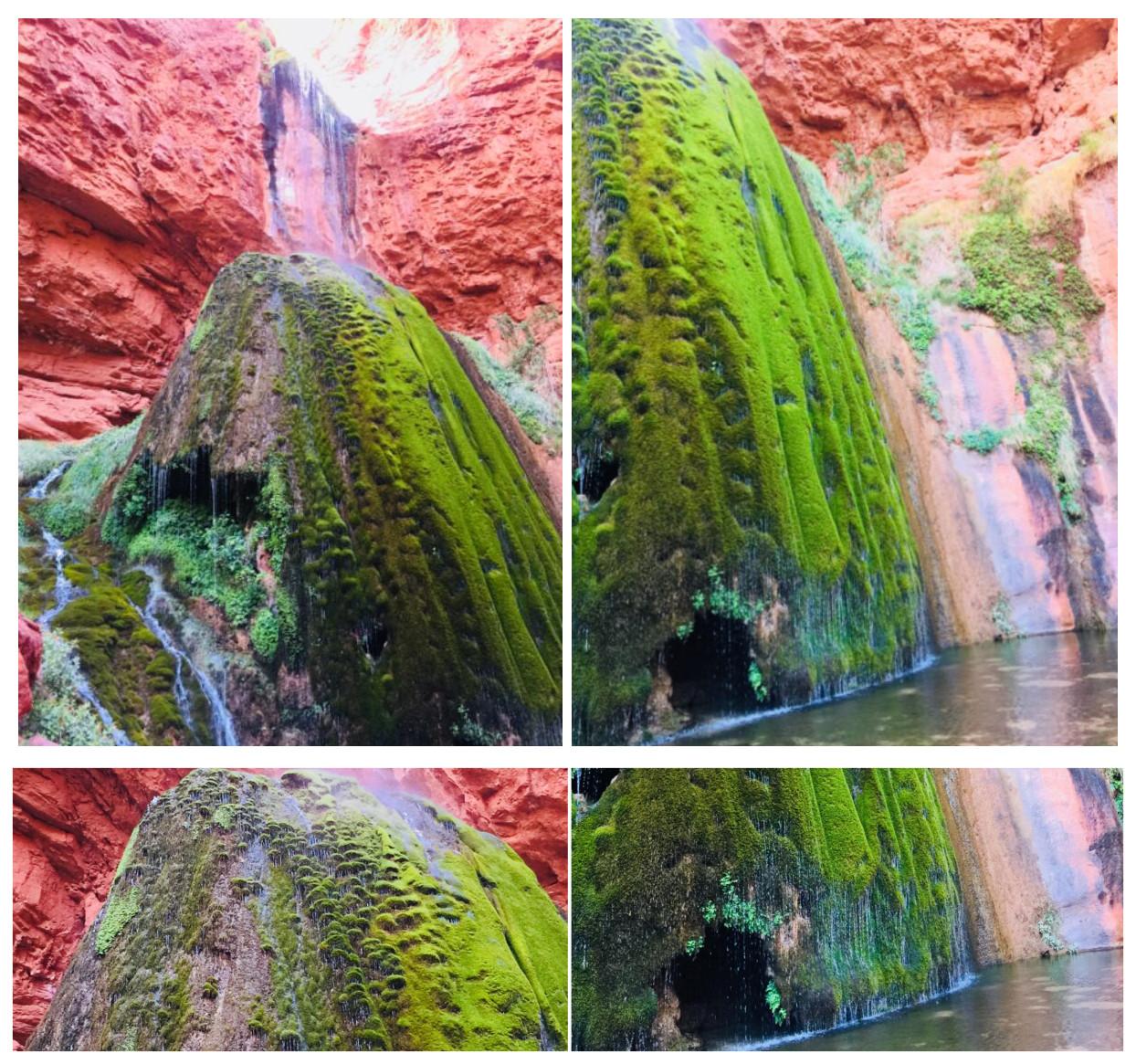 Grand Canyon_2018_59_1_1