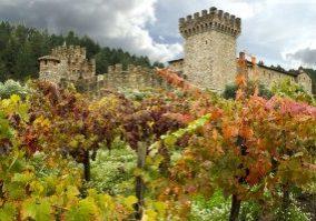 Castello di Amorosa in fall