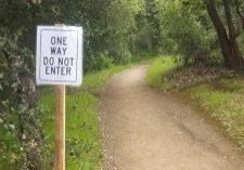 One-Way_edgewood-park2