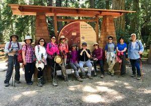 Redwood-Regional-Park_2019_12